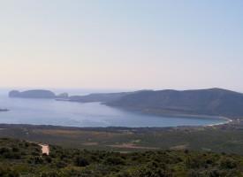 Mugoni: una bella spiaggia e un grande scrigno di biodiversità da salvare!