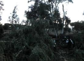 Tromba d'aria a Santa Maria la Palma – Tutte le immagini