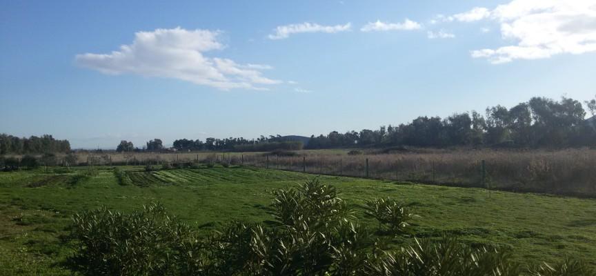 Porticciolo, Sa Segada e Fighera: ecco i 35 ettari che la Regione concede ai giovani agricoltori