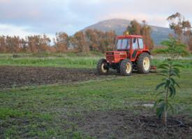 Imu agricola, via libera della Giunta al ricorso contro provvedimento nazionale