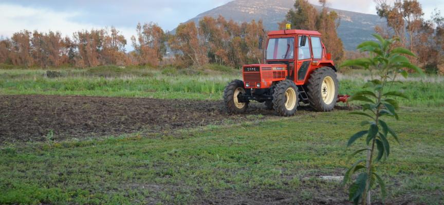 Agricoltura in Nurra, a rischio la stagione irrigua