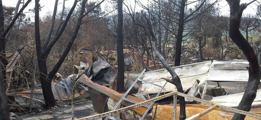 Bando per la messa in sicurezza di Mugoni, bonifica dopo la  devastazione di Porto Conte