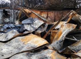 A Porto Conte disastro ambientale che non deve finire nel dimenticatoio (foto e video)