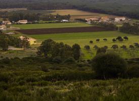 """""""Terra ai Giovani"""": pubblicato il bando di concessione per 11 lotti di terre incolte"""