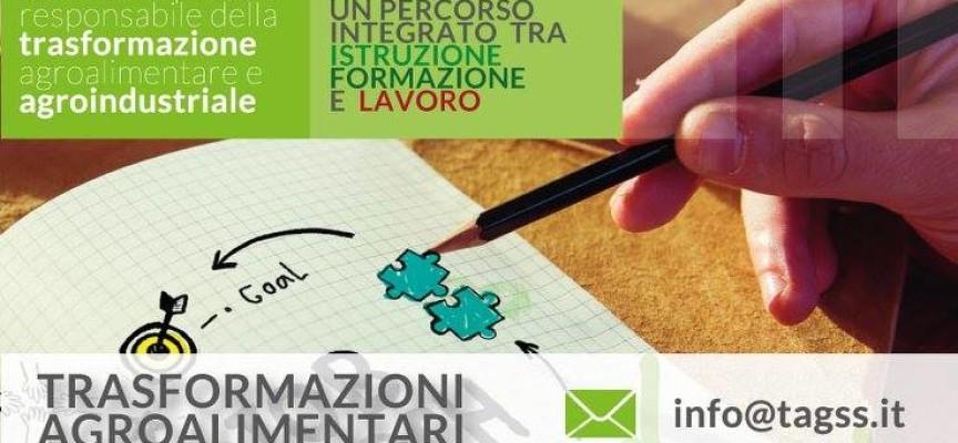 Corso ITS per tecnici della trasformazione agroalimentare, giovedì incontro di orientamento